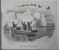 1855 Datato Antico Stampa ~ Mare Uccello Tiro