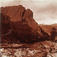 Algeria El Kantara Foto Stereo PL59L12n Placca Da Lente Vintage