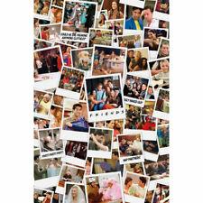 Friends Polaroids Maxi Poster - GB Eye 61 X 915cm Assorted