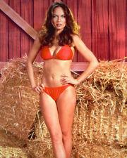Catherine Bach The Dukes Of Hazzard Full Length Bikini 16x20 Canvas Giclee