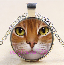Cat Face Photo Cabochon Glass Tibet Silver Chain Pendant Necklace#B2