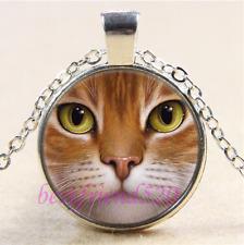 Cat Face Photo Cabochon Glass Tibet Silver Chain Pendant Necklace#G94