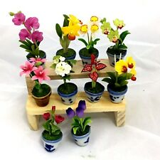 flowers miniature clay handmade set of random 10 lovely with 1shelve free