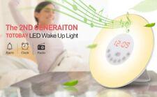 RADIO REVEIL ZEN LUMINEUX SIMULATEUR LEVER DE SOLEIL AUBE SON NATURE LAMPE 510
