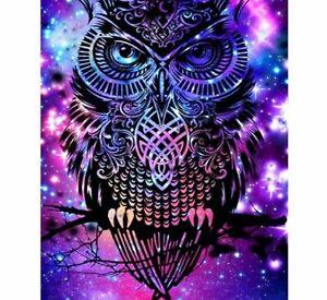 Owl 5D DIY Diamond Painting Lovely Color Design Bird Embroidery House Decoration
