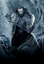 NEW LARGE THE HOBBIT DWAF KING THORIN DESOLATION OF SMAUG WALL ART PRINT POSTER