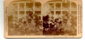 Antique 1899 Tuskegee AL Mayors Residence Reception McKinley Stereoscope Card