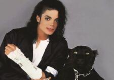 Michael Jackson Panther Impresión Arte Cartel Foto A3 tamaño GZ1721