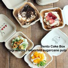 Disposable Bento Baking Cake Environmental protection Snack Boxes 10 pieces