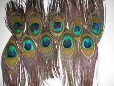 lot  10 plumes paon avec oeil 10 cm confection bijoux etc....