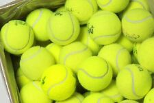 Tennis balls Pack Free Ship & Free Recycling support Recycle Balls nonprofit