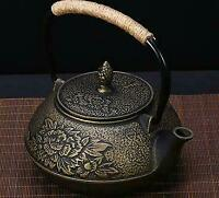 Tea pot Iron Kettle Sado Japanese Traditional Crafts New F/S courier