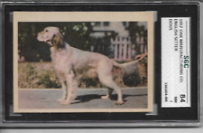 1957 Oak Manufacturing Co. English Setter Dogs Sgc Nm 7