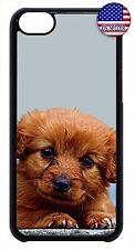 New For Apple iPod 4 5 6 Hard Skin Back Case Cover Puppy Dog Paw Cute Design