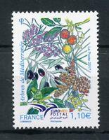 France 2017 MNH Trees of Mediterranean EUROMED Postal 1v Set Nature Stamps