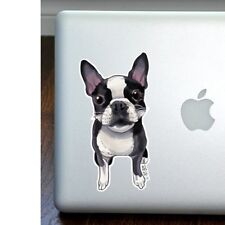 Boston Terrier Full Color Large Decal by Ivy Bee - New - Free Shipping Asap