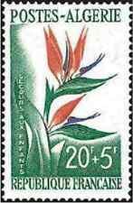 Timbre Flore Algérie * lot 7109