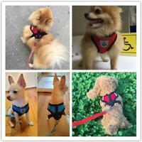 Breathable Pet Harness Vest Leash Set Dog Cat Soft Strap Mesh Bling Puppy H5D8