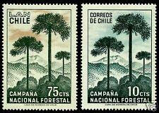 CHILE, MONKEY TREE, ARAUCARIA (ARAUCARIA ARAUCANA), FLORA, MNH, NICE SET