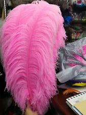 28-30 inches 50 Pieces Lime Green Ostrich Feathers (GA, USA)