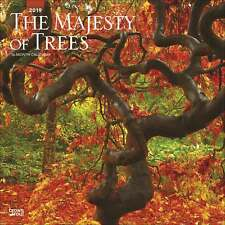 The Majesty of Trees Calendar 2019 Natural World Month To View