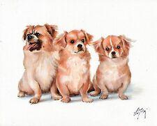 Original Oil Art TIBETAN SPANIEL Portrait Painting PUPPY DOG Artist Signed