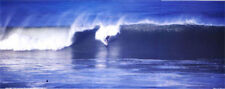 Surfing San Diego Surfer Panorama  11x28 inches Poster   #25
