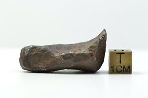 Meteorite MUNDRABILLA - found 1911 in Australia - individual - 42.8 g