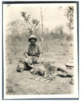 Tchad, Georges Roederer avec deux lions  Vintage silver print. Série de photos a