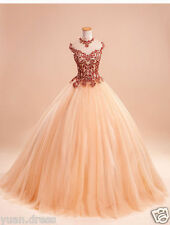 Hot Appliques Embroidery Quinceanera Dresses Prom Party Ball Dress For 15 Years