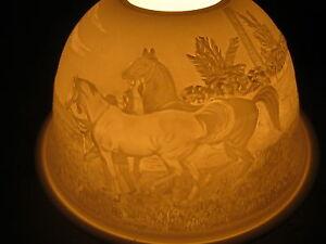 Magic Light, Tealight Dome Lights Starlight Lantern Horses 7198 B New