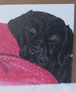 Black Labrador greeting card blank inside suitable for any occasion