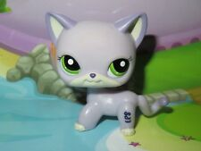 "*Petshop Chat Europeen/ Pet shop Kitty Cat* #2094 ""Port gratuit/ Free shipping"""