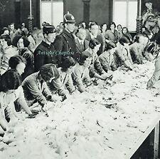 Irish Hospitals Grand National Sweepstake Earlsfort Terrace 1931 Photo Article