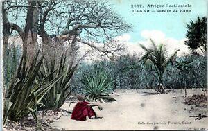1910 Dakar Senegal Hann Garden Africa Postcard 2057