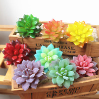 8PCS Artificial Succulent Plants Unpotted Fake Cactus Flocked Stems Xmas Gift