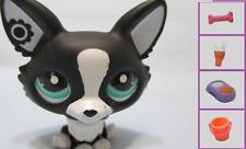 Littlest Pet Shop Dog Corgi 2245 and Free Accessory Authentic Lps