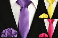 Cravates, nœuds papillon et foulards ensemble en polyester pour homme