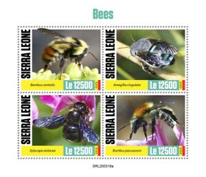 Sierra Leone Bees Stamps 2020 MNH Carpenter Bee Bumblebee Insects 4v M/S