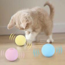 Cat ball enjoy the sound make him run let him enjoy and be physically fit