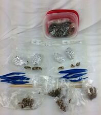 Barn Owl Pellet Kit Skeleton Lot  4 sanitized Pellets Central US Science Nature