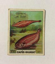 CHROMO Image CAFES GILBERT années 30 Série 23 n° 1 CARRELET ET SOLE