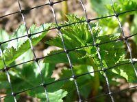 Anti Bird Crop Protection Netting Garden Plant Pond Mesh Net 4x10M Weather Proof