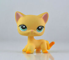 #339 Rare Littlest Pet Shop Orange Short Hair Cat Brooke Raceabout Ranch LPS