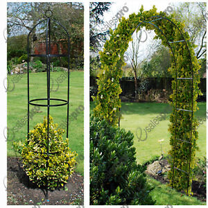Garden arch &/or obelisk trellis feature climbing plant roses - Multi Buy Deals