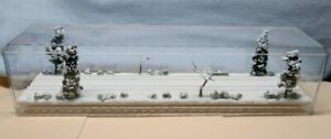 """N SCALE  16""""  DOUBLETRACK DISPLAY CASE -WINTER SNOW SCENE -FOR ANY N TRAIN-sdS3"""
