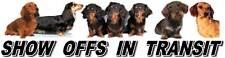 DACHSHUND Show Off Dog Car Sticker By Starprint