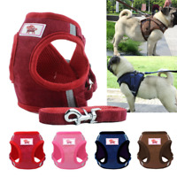 Mesh Padded Dog Harness with Leash Pet Puppy Vest for Small Medium Dogs Walking