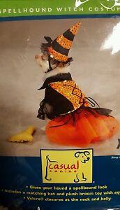DOG WITCH COSTUME, SPELLBOUND, halloween costume