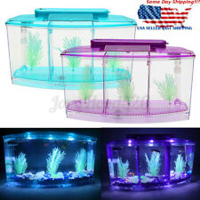 Betta Fish Aquarium Tank with LED Divider Filter Small Penn Plax Deluxe Triple